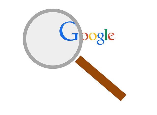 What-Does-Googles-Project-Owl-Mean-for-Search-and-Fake-News.png